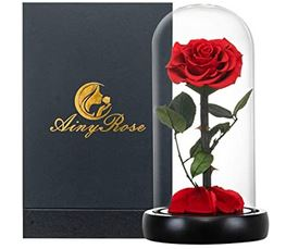 Preserved Real Rose in Glass Dome Gift